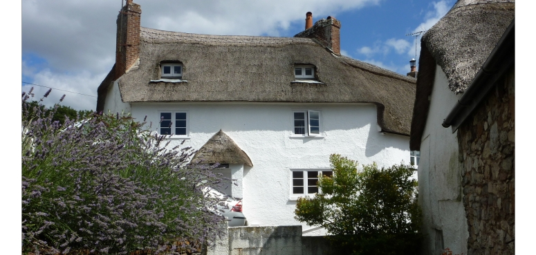 The Perfect Devon cottage for rent in exeter